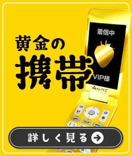 黄金の携帯 詳しく見る
