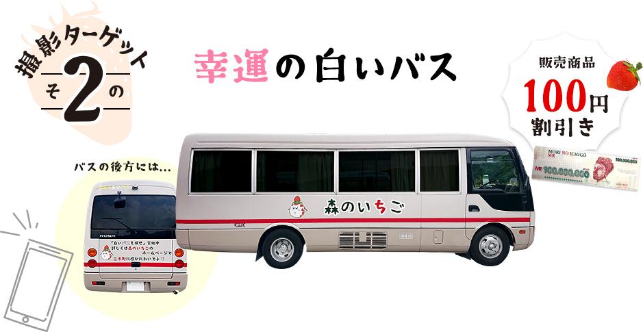 撮影ターゲットその2 幸運の白いバス 販売商品100円割引き