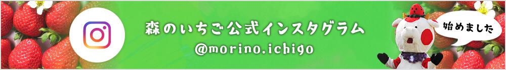 森のいちご公式インスタグラム @morino.ichigo